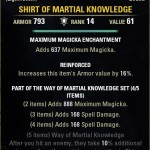 Shirt of Martial Knowledge