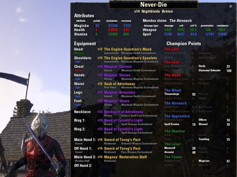 Never Die PvP My Build Picture